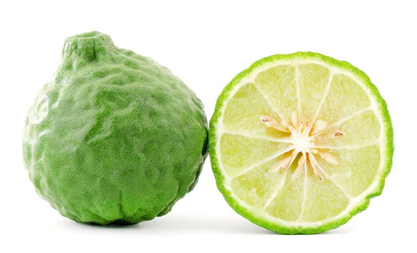 Citrus-Histrix--Combawa-v-26.jpg
