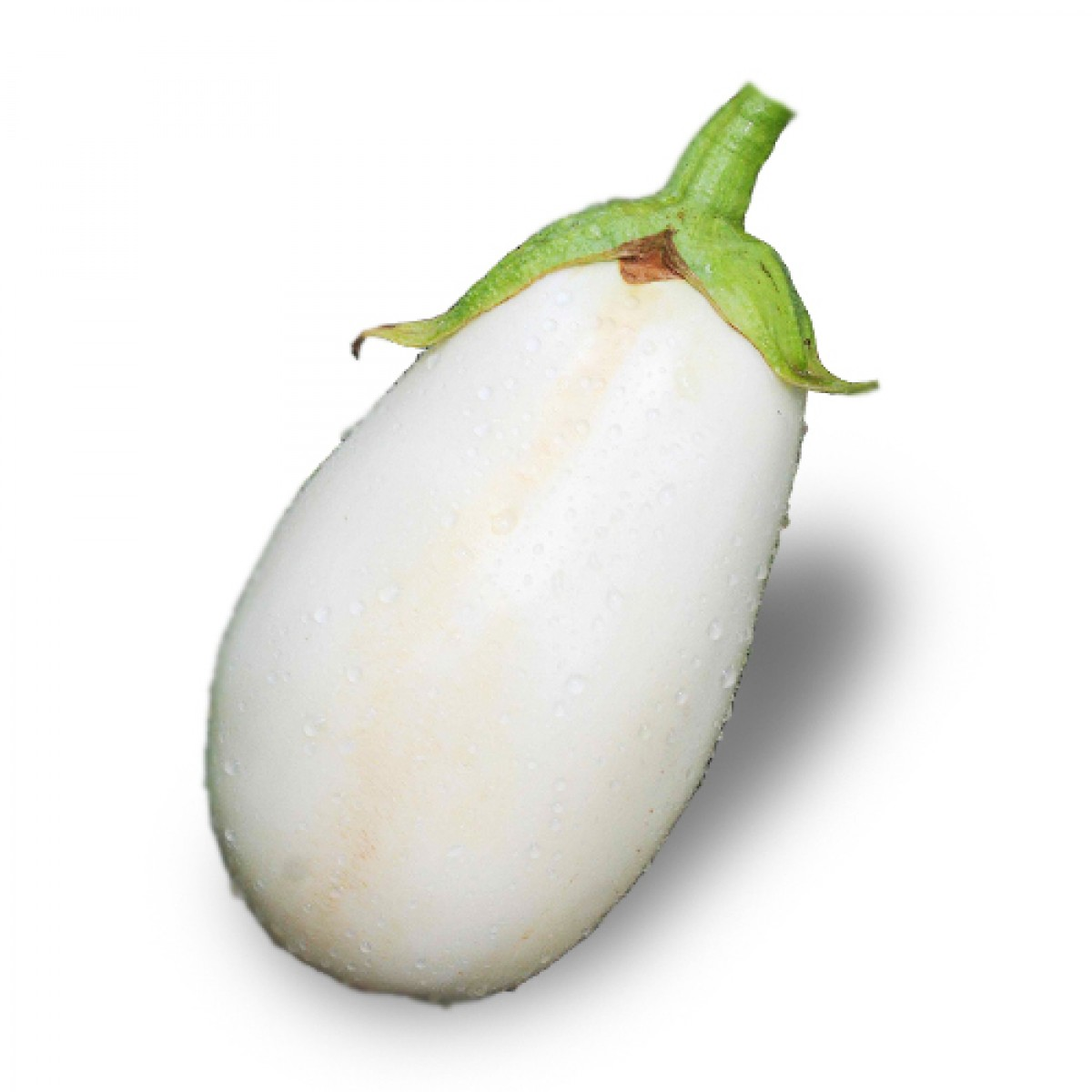 melanzana-bianca-savinivivai