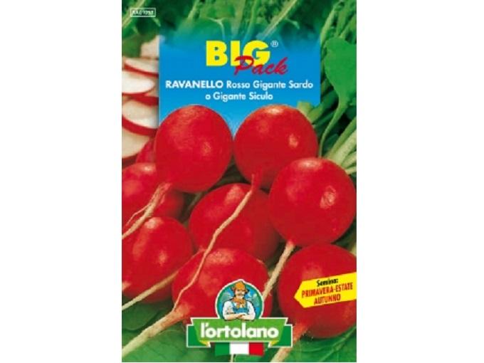 Vivaio Margine Rosso : Buste di sementi di ravanello rosso gigante sardo o gigante siculo