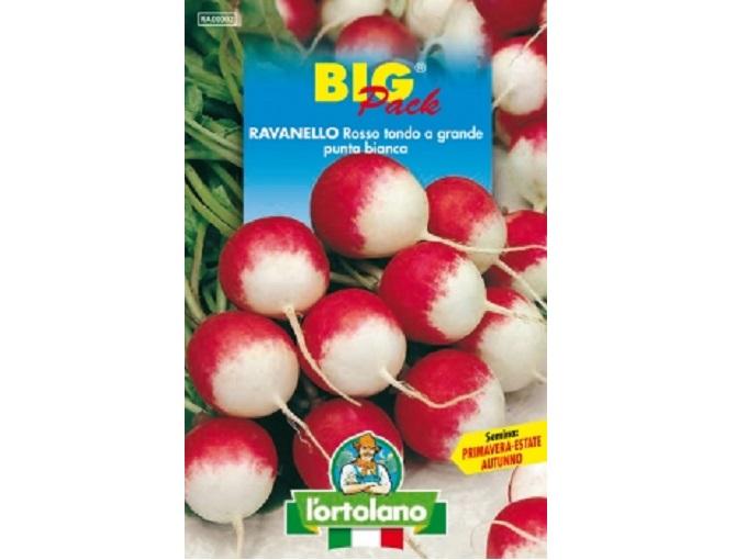 Vivaio Margine Rosso : Buste di sementi di ravanello rosso tondo a grande punta bianca