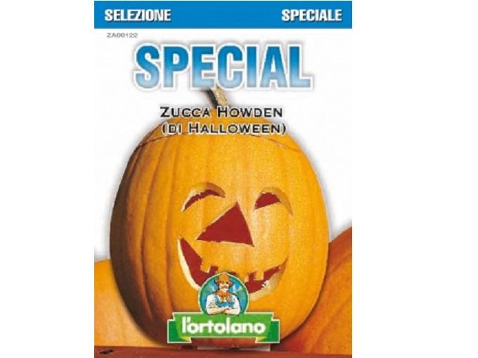 Pianta Di Zucca Di Halloween.Buste Special Di Zucca Howden Di Halloween Savini Vivai Di