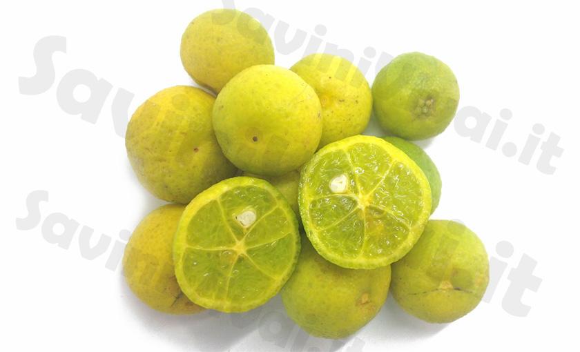 Limone-Caviale-Virgata.jpg
