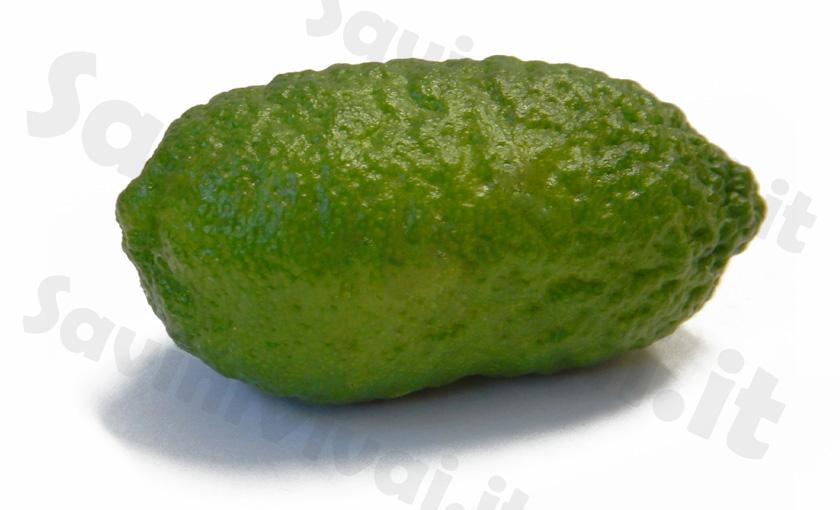 limone-caviale-rosa-1.jpg